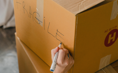 Understanding the Different Types of Moving Insurance and Choosing the Right One